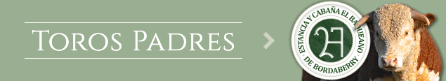 TorosPadres